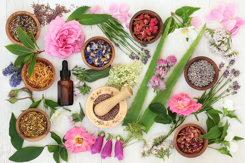 Perfect Bach Flower Remedies for Each Astrological Sign