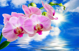 Freshen-Up-Your-Spiritual-Practice
